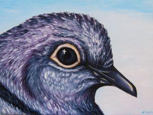 doves-eyes