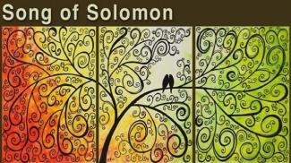 song-of-solomon1